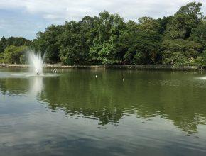 Lake Gardens Lake