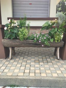 Hollowed-out log used as a planter box